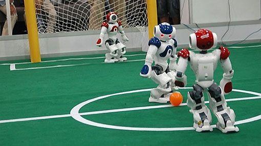 Robot Polvo 2